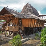 Lolofaoso Traditional House, Lotu, North Nias.