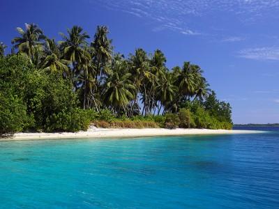 Makora Island North Nias