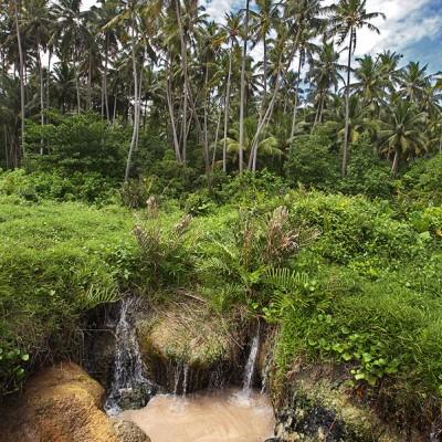 Fresh-water spring near Nela Beach on the west-coast of Nias Utara.