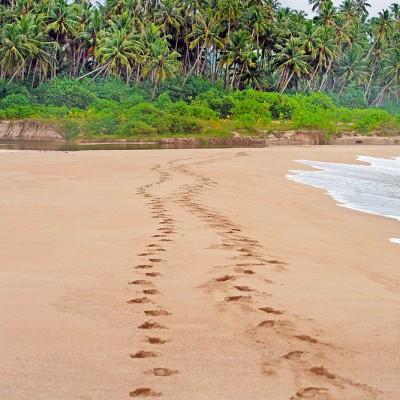 Pasir Putih (White Sand) Beach on the west-coast of Nias Utara.
