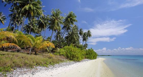 Beach on the north side of Wunga Island lagoon.