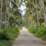 Road in Afulu, North Nias (Nias Utara). Nias Island, Indonesia.