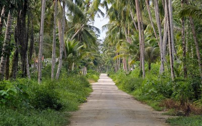 Road in Afulu, North Nias (Nias Utara). Nias Island, Indonesia.