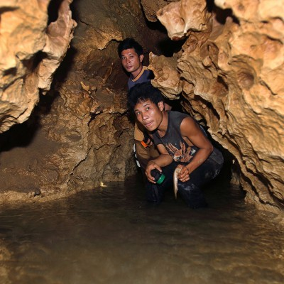 Speleology, or caving has huge potential on Nias Island. Lots known caves are waiting to be fully explored. Togi Henu, Alasa Sub-district.