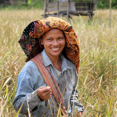 A smiling woman in a rice field, Afulu sub-district, North Nias Regency.